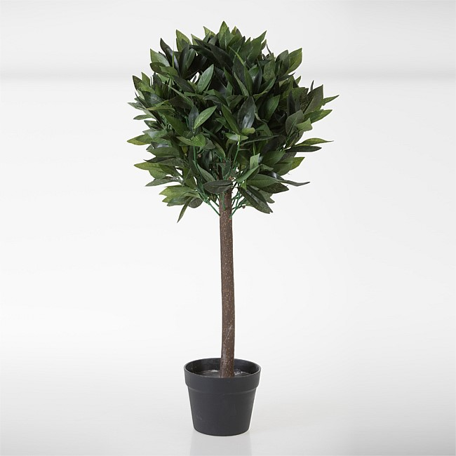 Everlasting Topiary Bay Tree 80cm