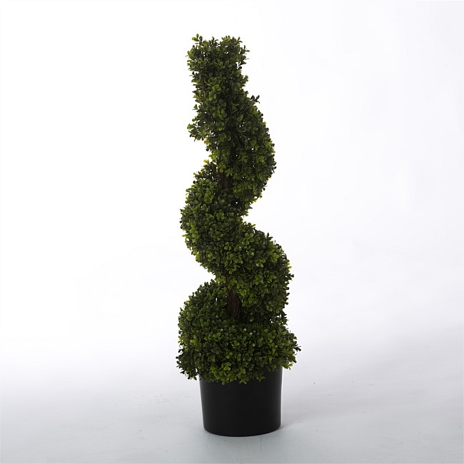 Everlasting Spring Spiral Potted Topiary