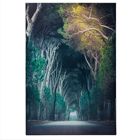 Solace Mystic Arda Forest Wall Art
