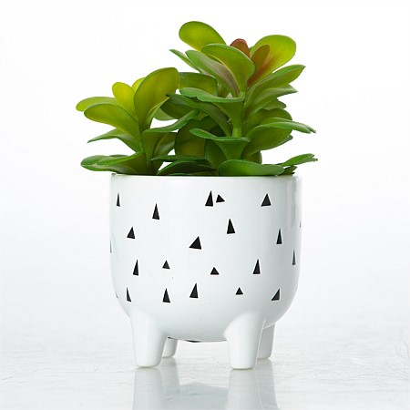 Everlasting Greenery In Rain Ceramic Pot